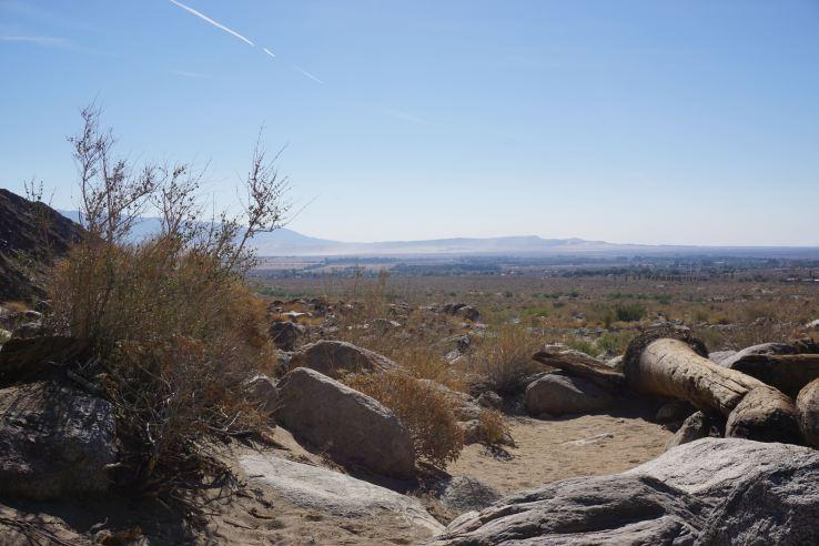 Anza-Borrego Desert - 12