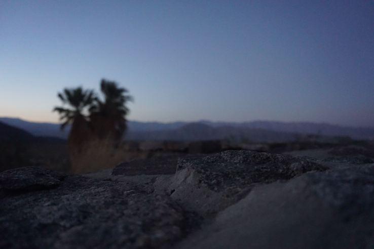 Anza-Borrego Desert - 3