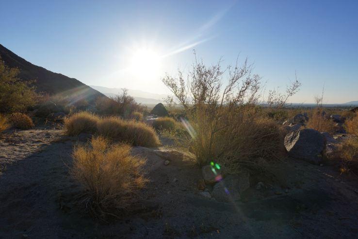 Anza-Borrego Desert - 8